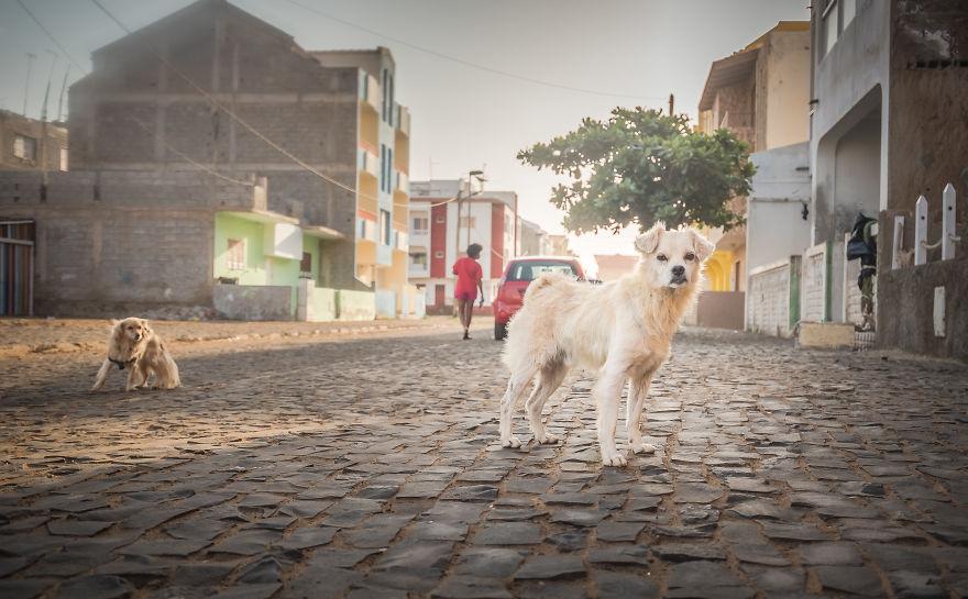 The Streets Of Santa Maria