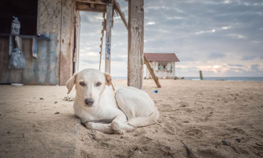 Praia De Igrejinha