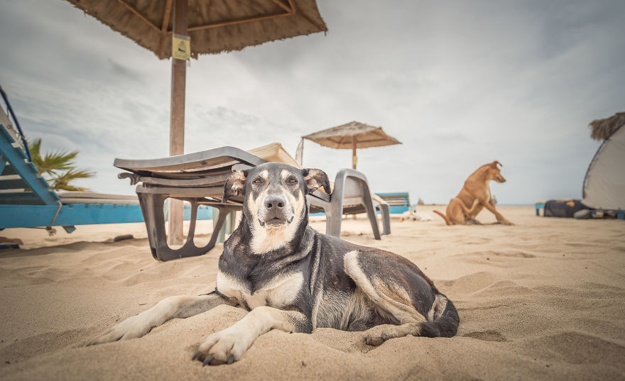 Colombus Beach