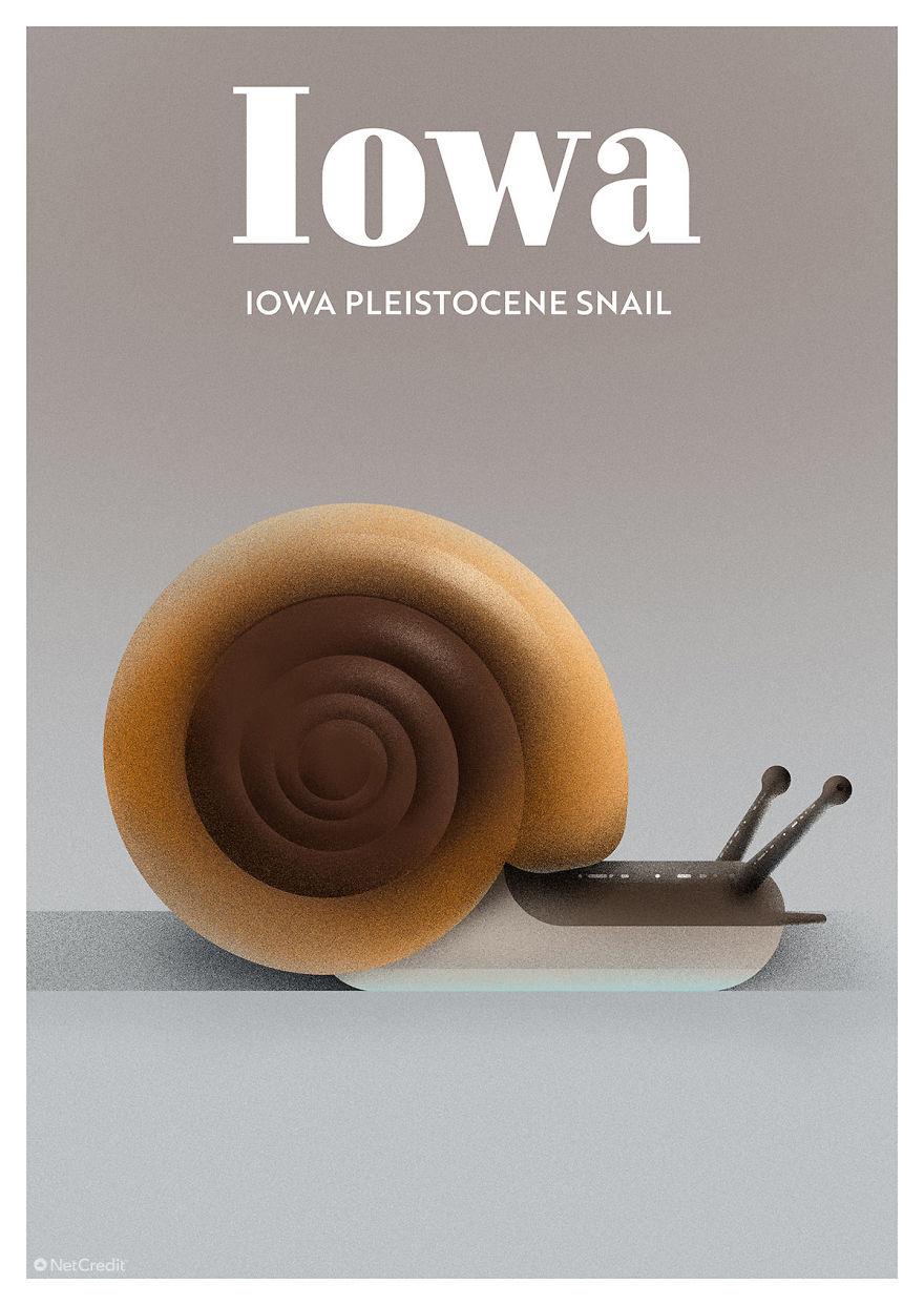 Iowa Pleistocene Snail