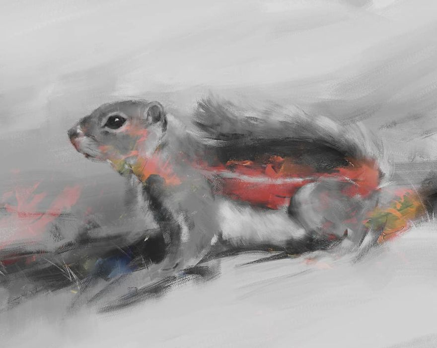 Nelson's Antelope Squirrel