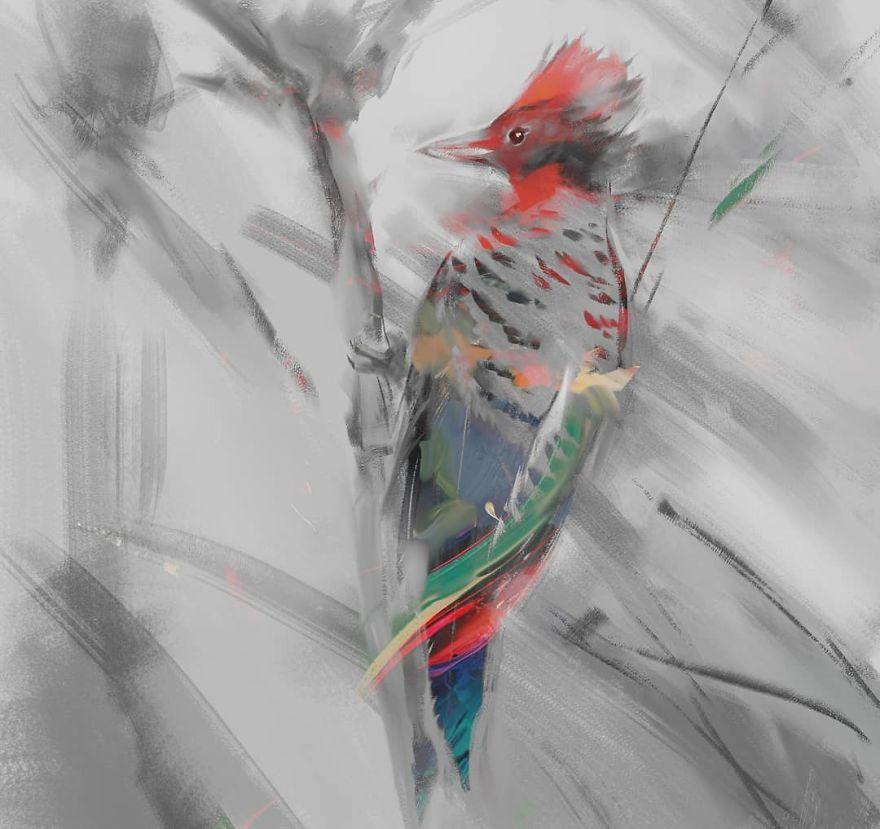 The Kaempfer's Woodpecker