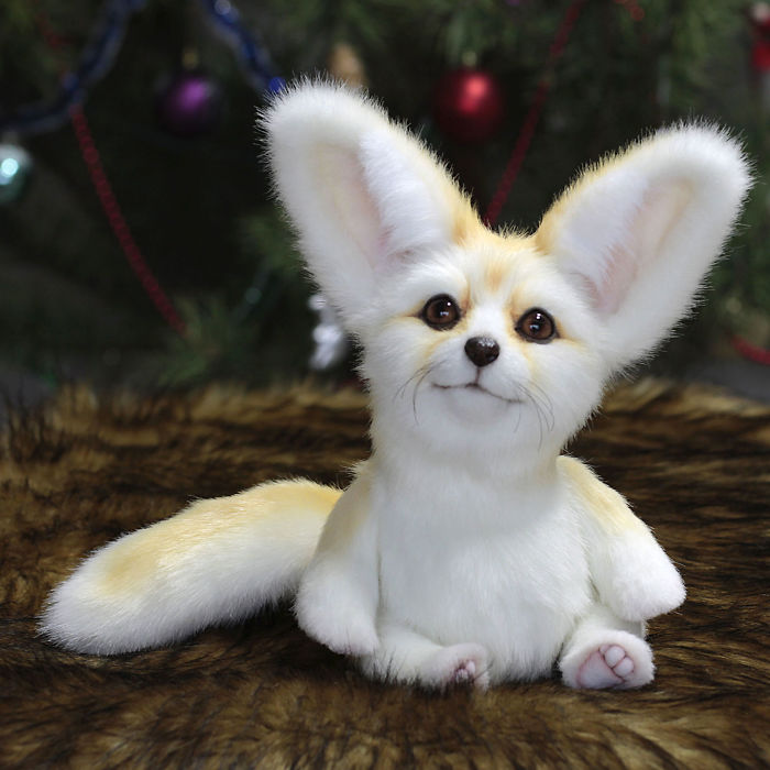 Meet The Puppy Fennec Fox Named Snowy . one Of A Kind.