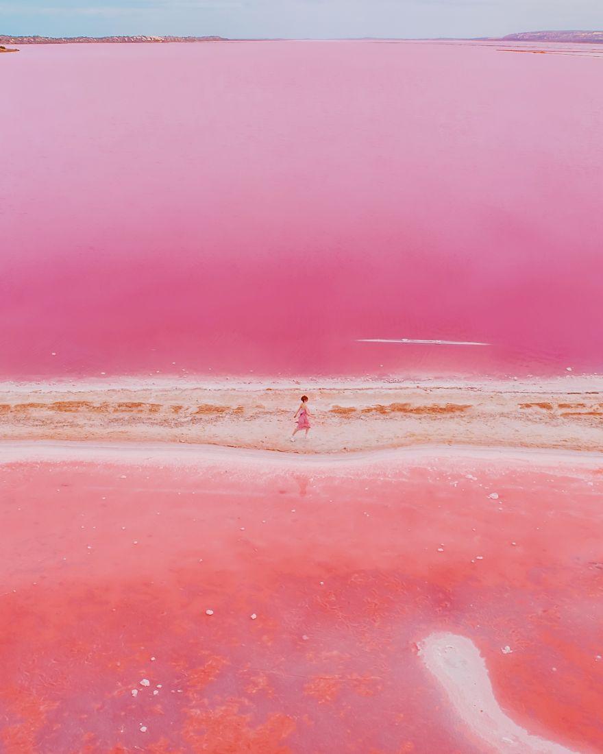 Magic Pink Lagoon In Western Australia
