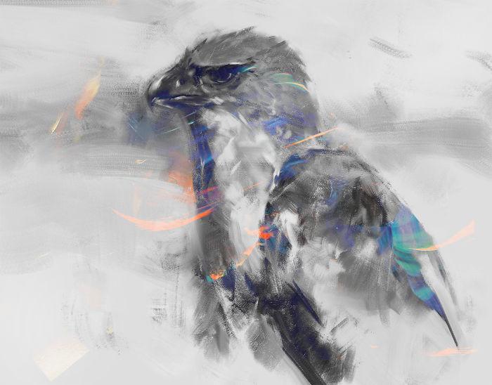 New Guinea Harpy Eagle