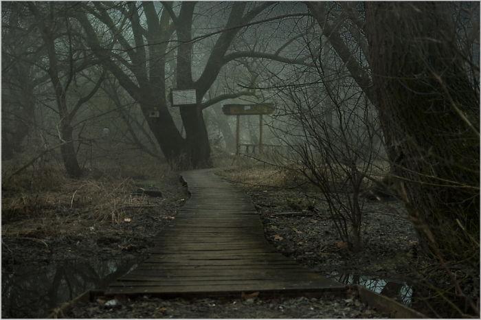 I Found The Path To Mordor
