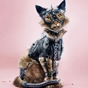 Swiss Foundation Raises Awareness About Animal Abuse By Posting Shocking Images Of Animals In BDSM Clothes