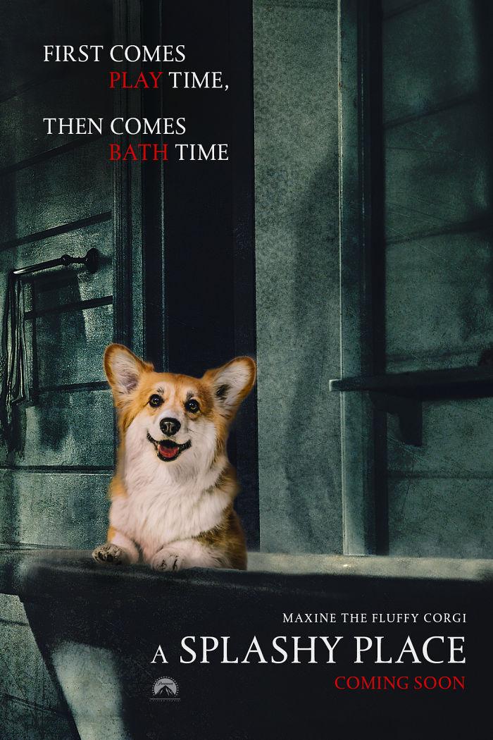 Corgi Gets Photoshopped Into Popular Movie Posters (13 Pics)