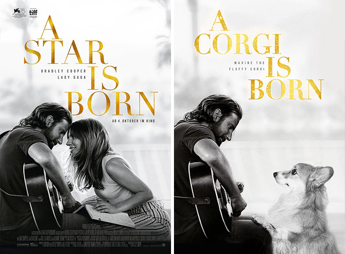 Corgi Gets Photoshopped Into Popular Movie Posters (13 Pics)