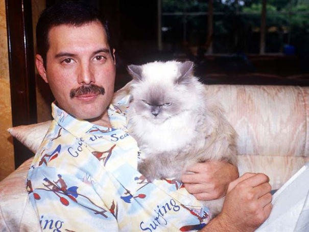20 Pics Of Freddie Mercury And His Cats, That He Loved And
