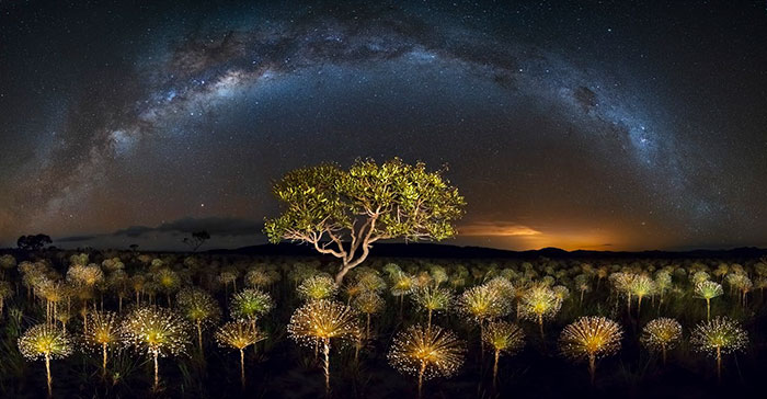 Veadeiros Tablelands National Park, Brazil, Marcio Esteves Cabral