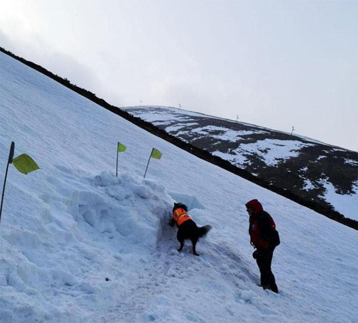 Este hombre enterrado en la nieve grabó al perro de rescate que lo salvó, y es precioso