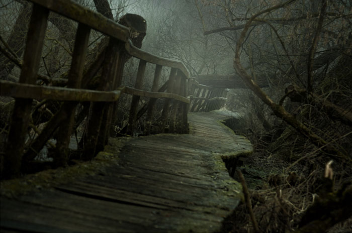 I Found A Chilling Path That Looked Like A Trail To Mordor (20 Pics)