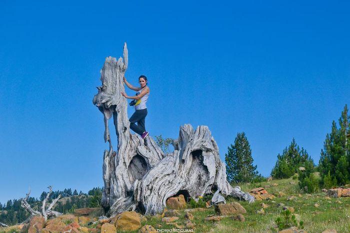 A Walk Among The Natural Sculptures Of The Valia Calda National Park