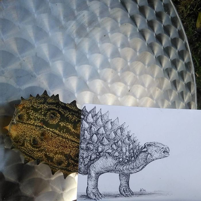 Dinosaur Kiwano