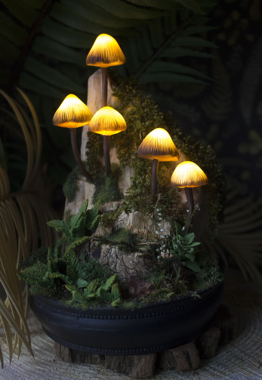 Mycena Mushrooms On A Piece Of Driftwood Night Light