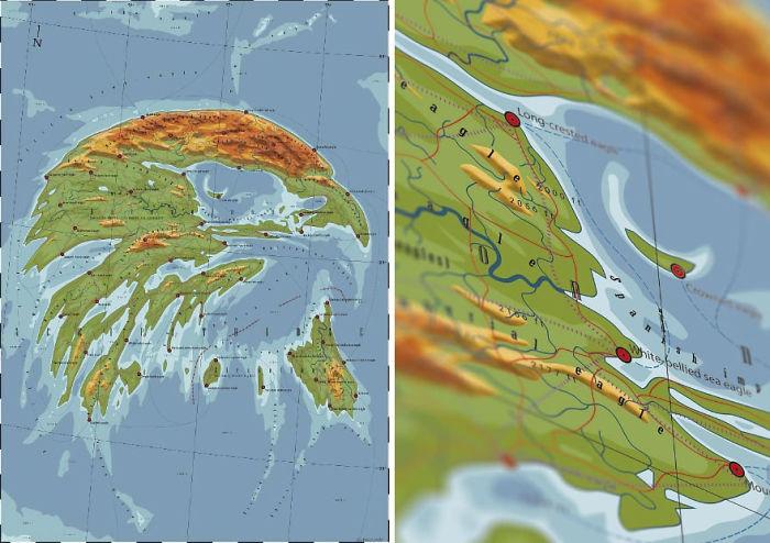 Accipitridae – Land Of The Eagle