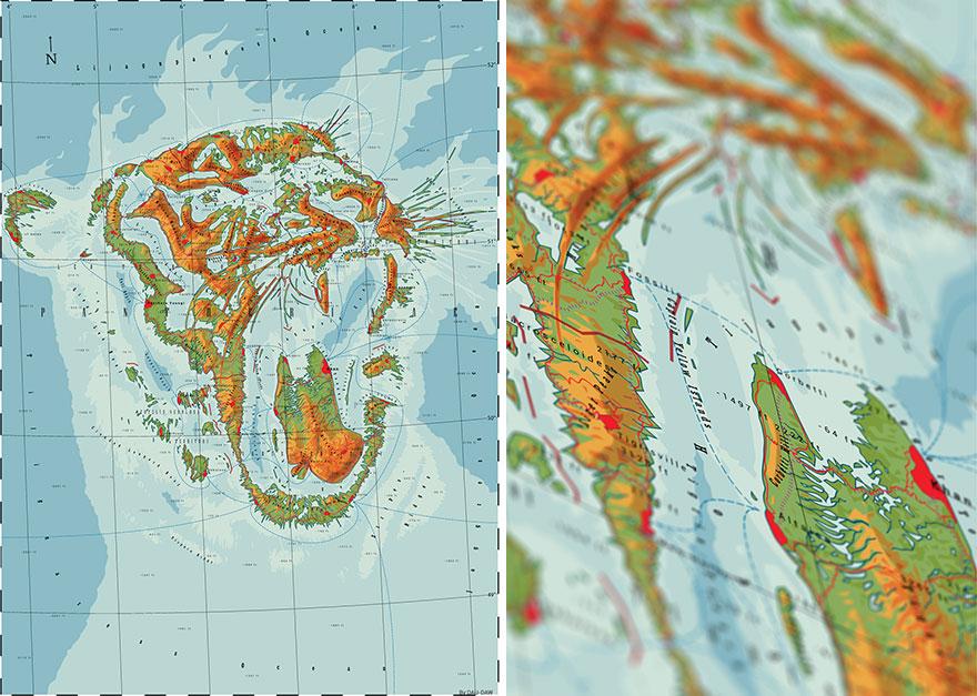 Pantherinae - Büyük Kediler Ülkesi
