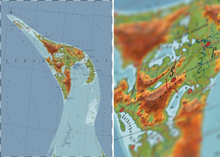 Spheniscidae - Penguen Ülkesi