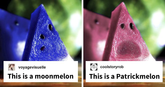 Someone Posts Pic Of A 'Moonmelon,' People Respond With Hilarious Comments