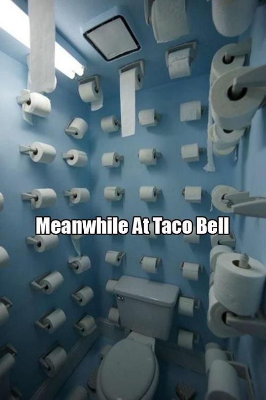 funny-Taco-Bell-toilet-paper-bathroom-5c9a33136687a.jpg