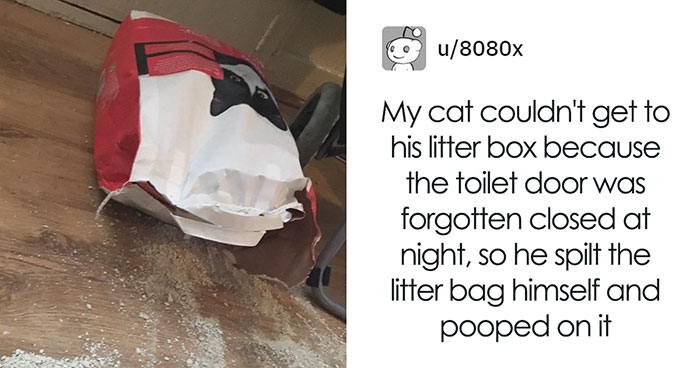 Cat Splits Open A Litter Bag To Poop After He Finds Door To His Litter Box Shut, People React With Hilarious Comments