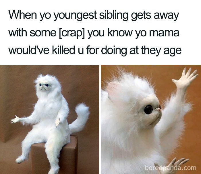 107 Of The Funniest Sibling Memes To Share With Your Brother
