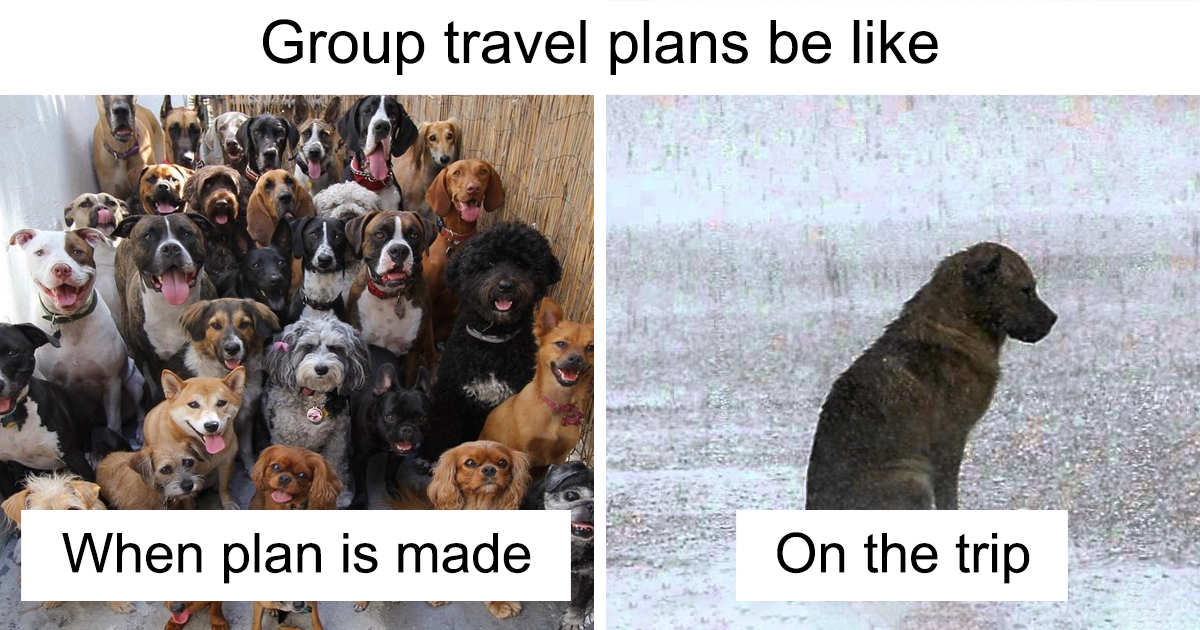 98 Of The Best Travel And Vacation Memes Ever