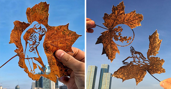 I Create Drawings By Cutting Fallen Leaves (24 Pics)