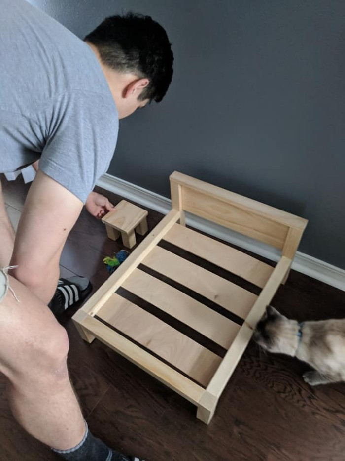 Wife Is Dying From Laughter After Finding Out The Bed Her Husband Was Building Is For The Cat, Not For Them