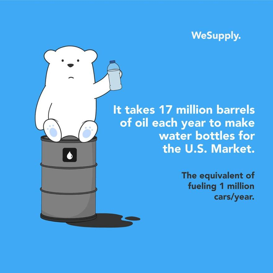 We Created 40 Informative Illustrations About Environmental Issues