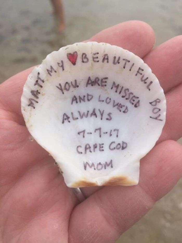 Found This Shell On Corporation Beach On Cape Cod. Instant Goosebumps