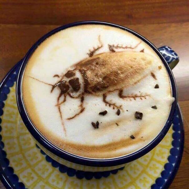 This Cockroach Cappuccino