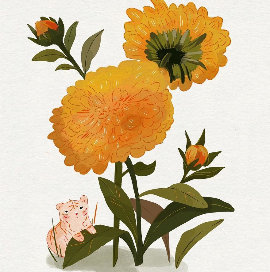 Small Tiger Living In Calendula Flowers