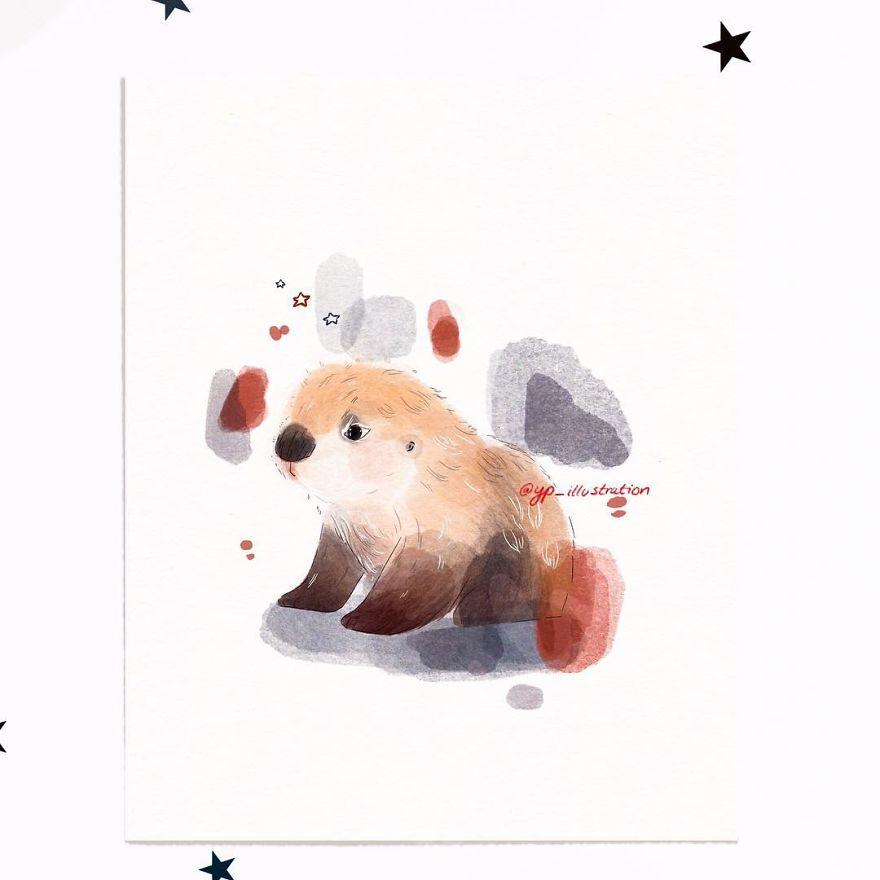 Dizzy Fluffy Otter