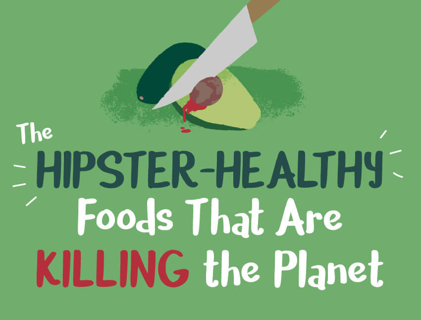 Avocado, Quinoa And Coconut: Trendy Health Foods That Are Actually Harming The Planet