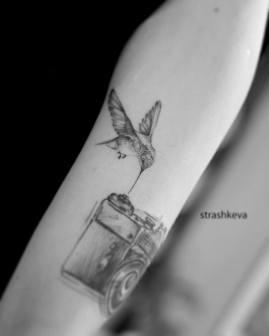 A Bird And Camera