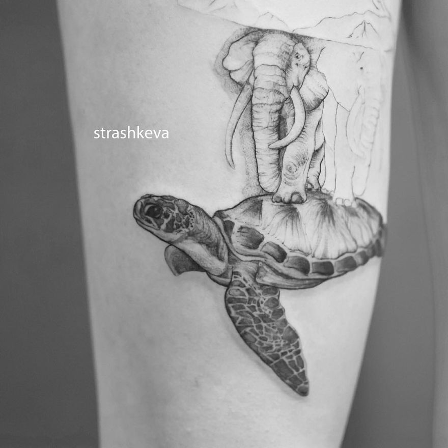 Turtle And Elephant