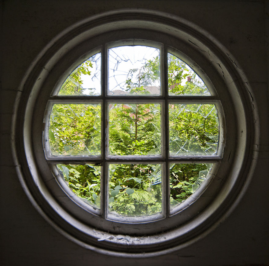 Through The Round Window