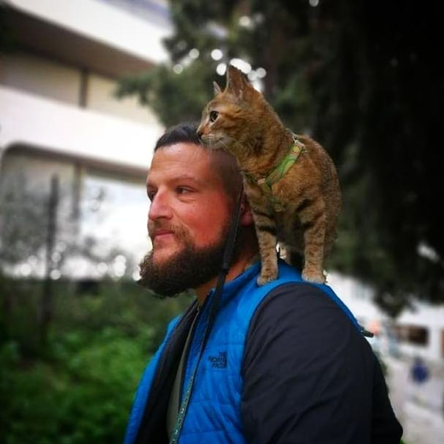 Scottish Man Decides To Cycle Across The Globe Solo But Finds A Stray Cat Which Accompanies Him