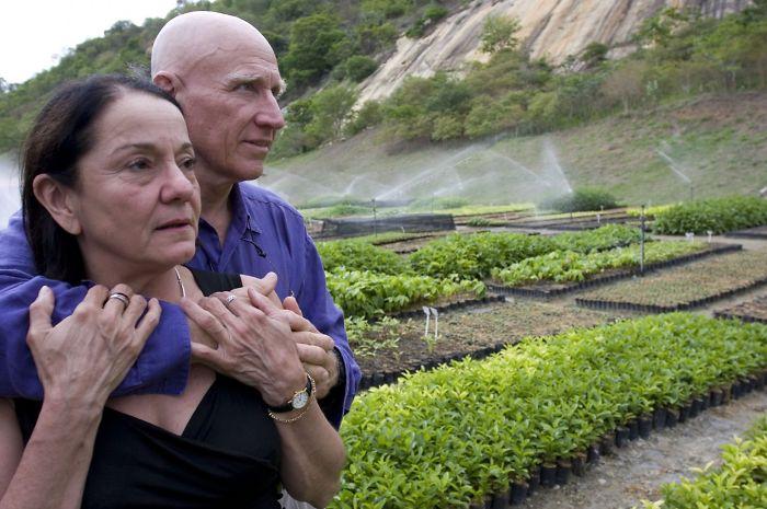 Brazilian couple recreated forest revastiao eil salgado reforestation