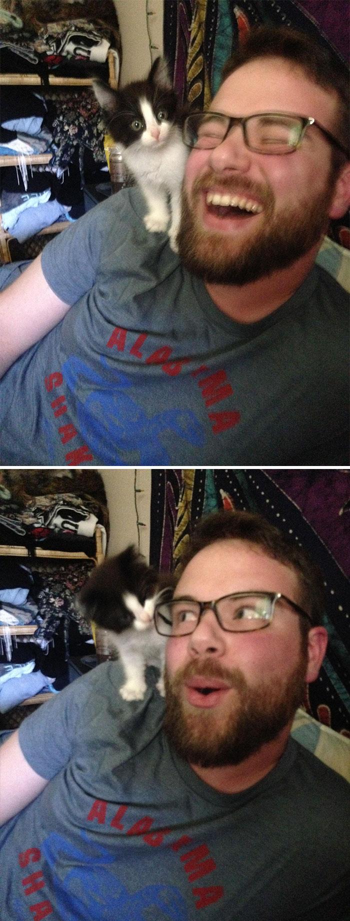 My Boyfriend Said He Doesn't Like Cats