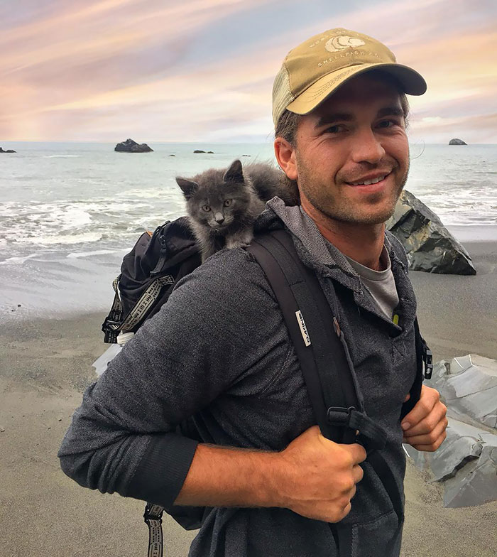 """One Of My Favorite Photos From Way Back When I Was A Kitten Backpacking With My Dad"""