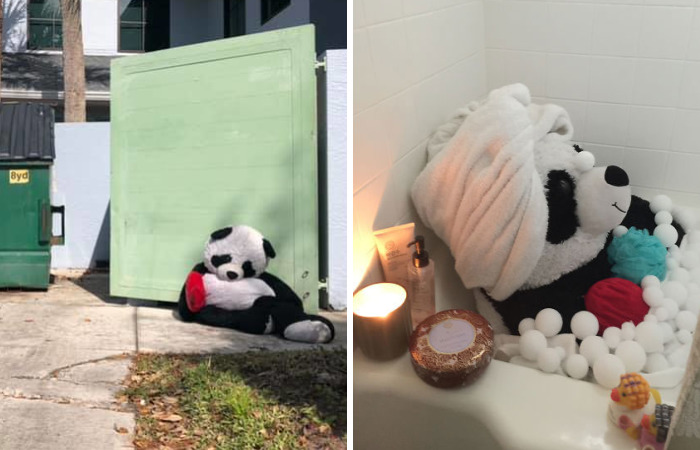 The Tale Of A Heartbroken, Homeless Panda Whose Life Was Transformed By The Love And Compassion Of Strangers