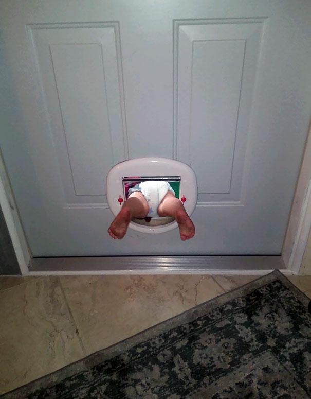 My Niece Discovered The Cat Door Today