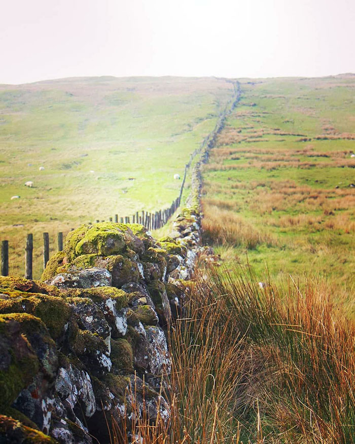 Stonewall In Knocklayd, Northern Ireland