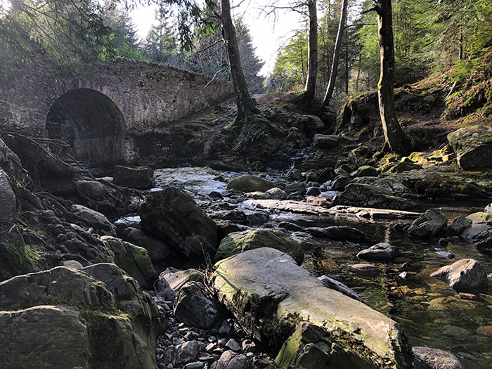 Tollymore Forest In Northern Ireland - The Place Where Is All Started Back In The First Season
