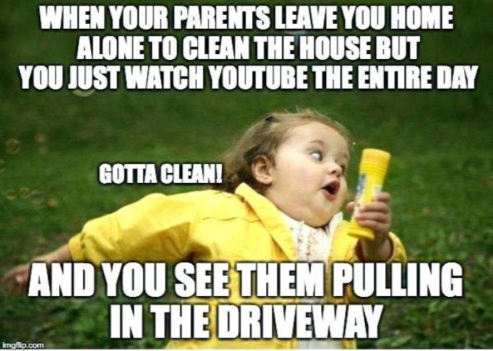 74 Funniest Cleaning Memes