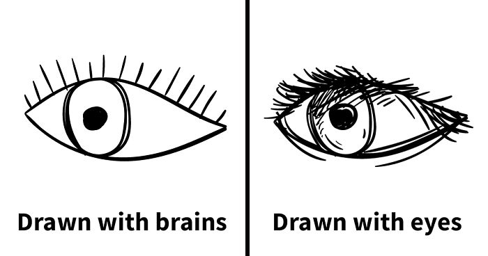 Artist Points Out The Mistakes Beginner Artists Make Because They Draw With Their Brain, Not Their Eyes