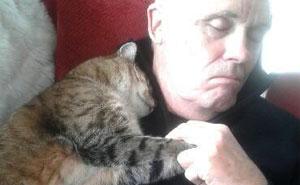 Este hombre recuperándose de una operación se despierta con un gato desconocido acurrucado encima suyo
